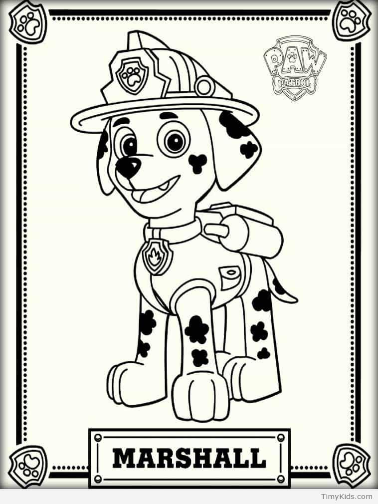 35 Paw Patrol Printables For Kids Timykids Paw Patrol