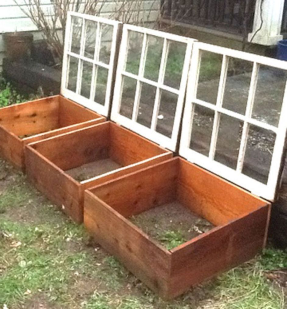 Winter Vegetable Garden Cold Frame 6