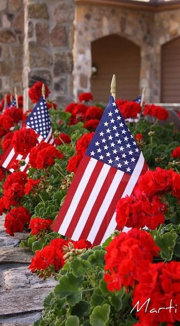 Flags and flowers at the dillard house flags red white blue and flags and flowers at the dillard house geraniums usa love this so very fourth of julysummer to me mightylinksfo