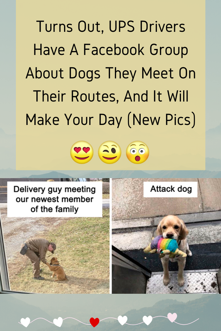 Turns Out Ups Drivers Have A Facebook Group About Dogs They Meet On Their Routes And It Will Make Your Day Dogs New Day Ups