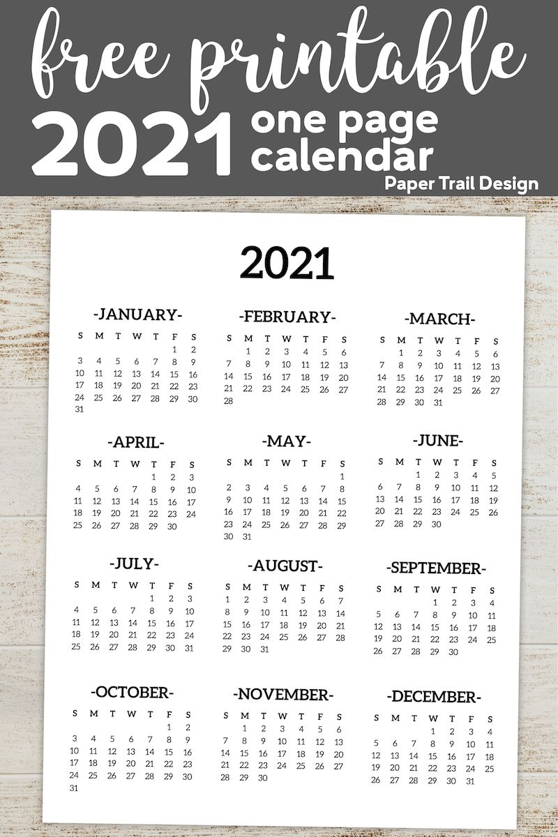 1 Year Calendar 2021 Calendar 2021 Printable One Page | Paper Trail Design | Print