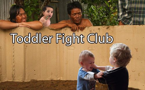 Toddler Fight Club?