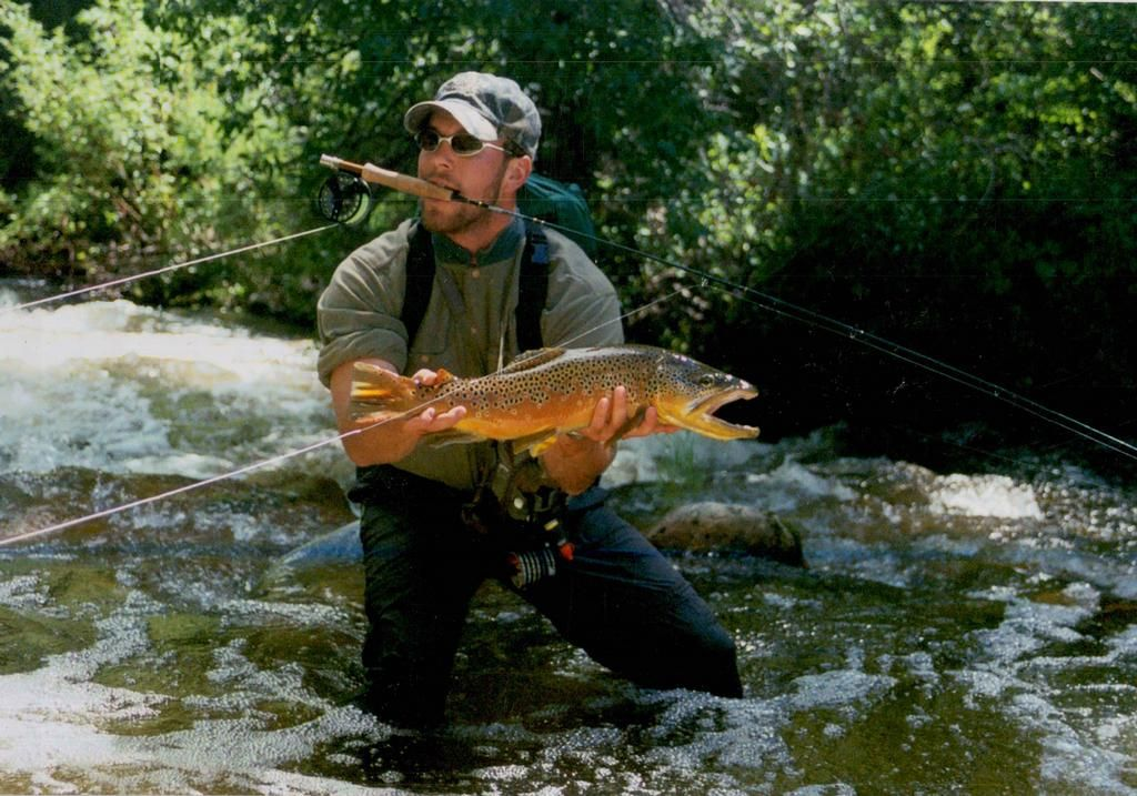 Brown trout by rock creek anglers fishing quotes photos for Rock creek fishing