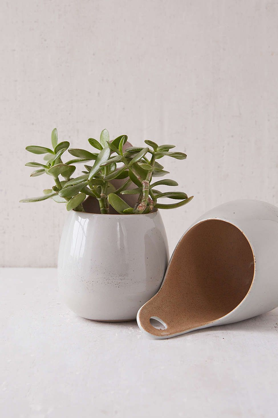 Magical Thinking Herb Pod Planter
