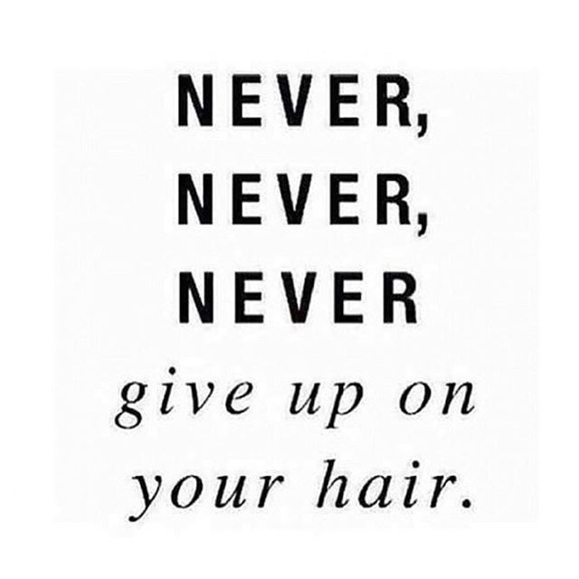 Pretty Much Hair Quotes Funny Hair Quotes Curly Hair Quotes
