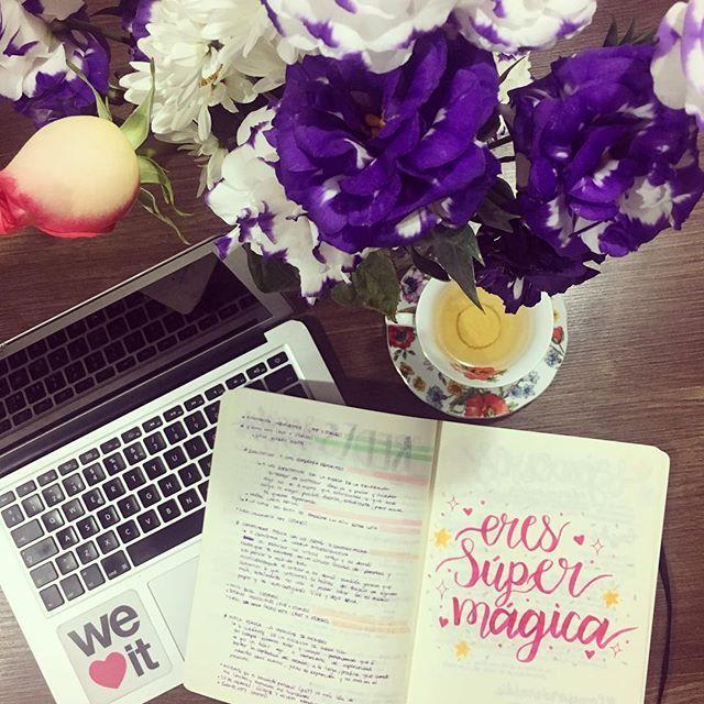 Estoy revisando mis pendientes para mañana y me encanta el ambiente que hay en mi casa : té, flores, mi bullet journal y ustedes ✨❤️ #instagramer #blogger #flores #te #tea #flowers #bulletjournal #calligraphy #organizacion