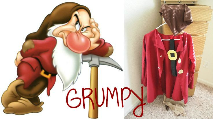 "Snow White /""GRUMPY/"" Dwarf//Gnome Fancy Dress ALL AGES"
