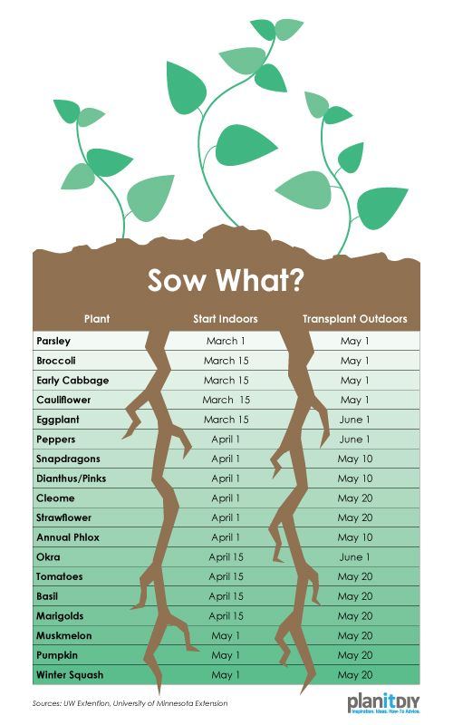 Use this chart to plan when to start seeds indoors and when to – Garden Planting Times
