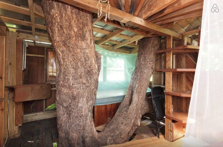 A treehouse six other little places to rent on airbnb