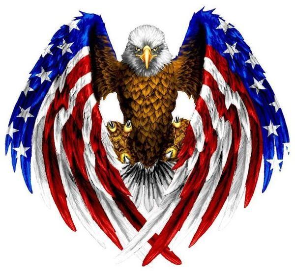 5D Diamond Painting American Flag Eagle Kit   Beta ...