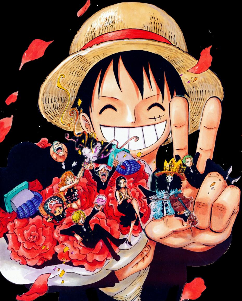 No Robin No One Piece One Piece Manga One Piece Anime One Piece Tumblr