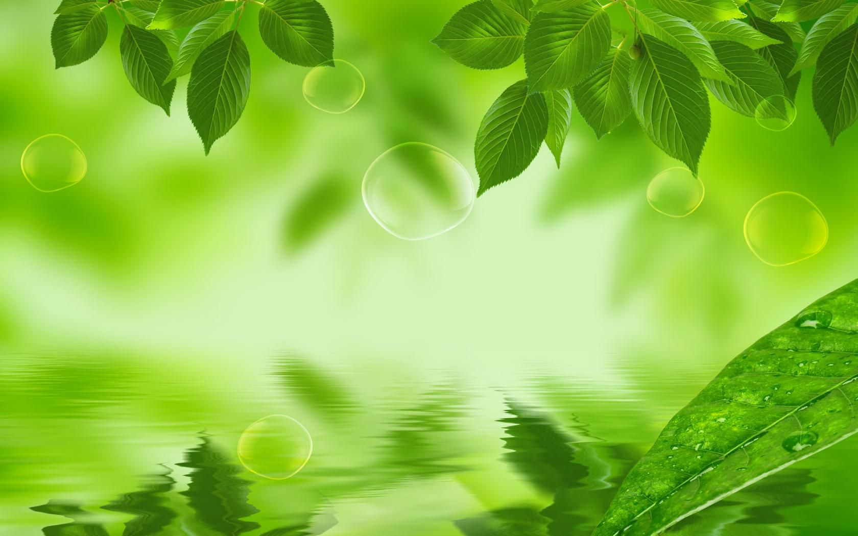 green nature background hd - photo #18
