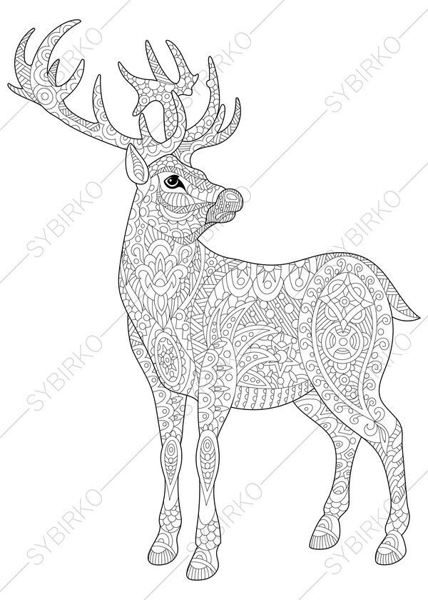 3 Coloring Pages Of Christmas Deer Reindeer From ColoringPageExpress Shop Hand Drawn Illustrations Both For Adults And Kids Designed By Oleksandr Sybirko