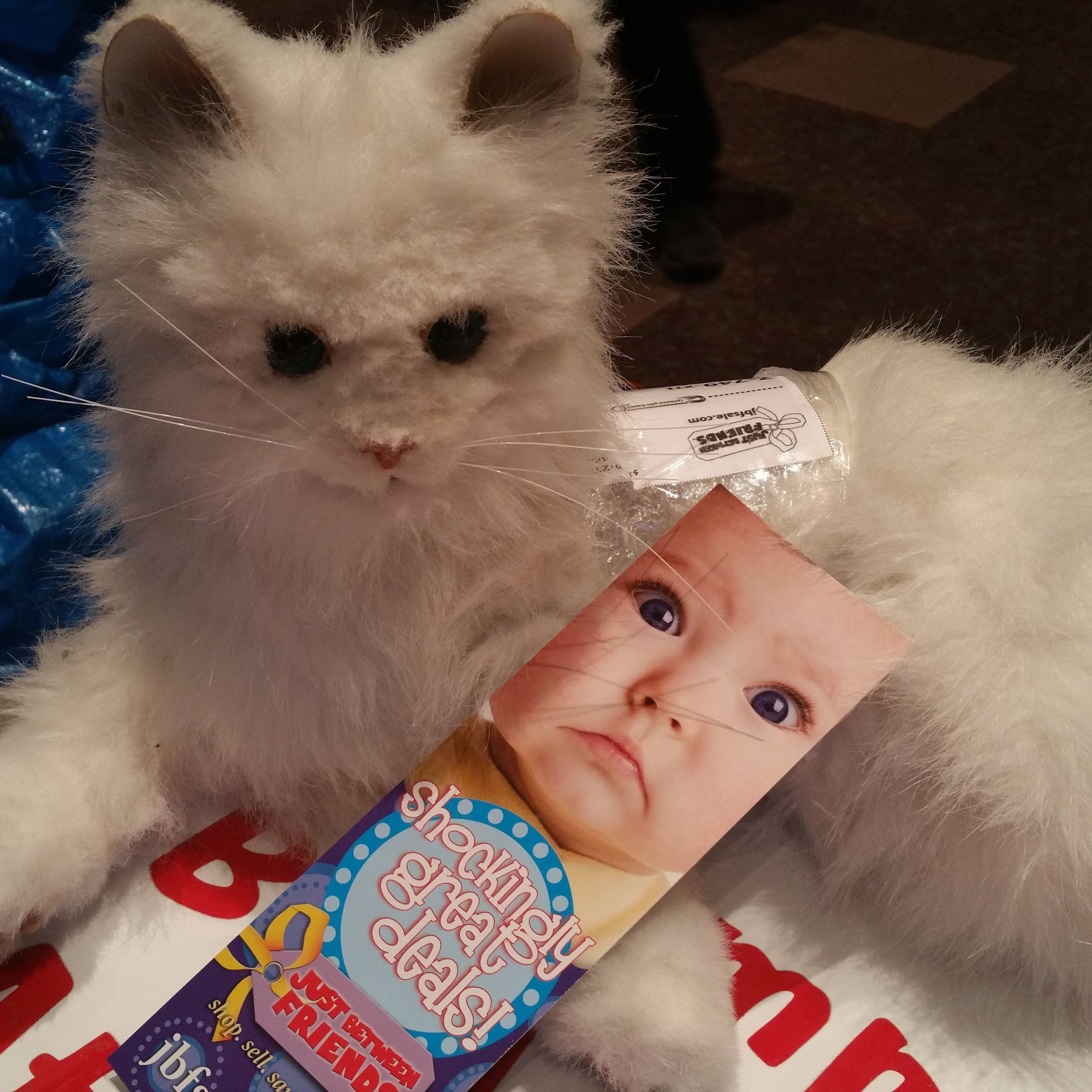 Please come buy this furrreal cat at the JBF Lee's