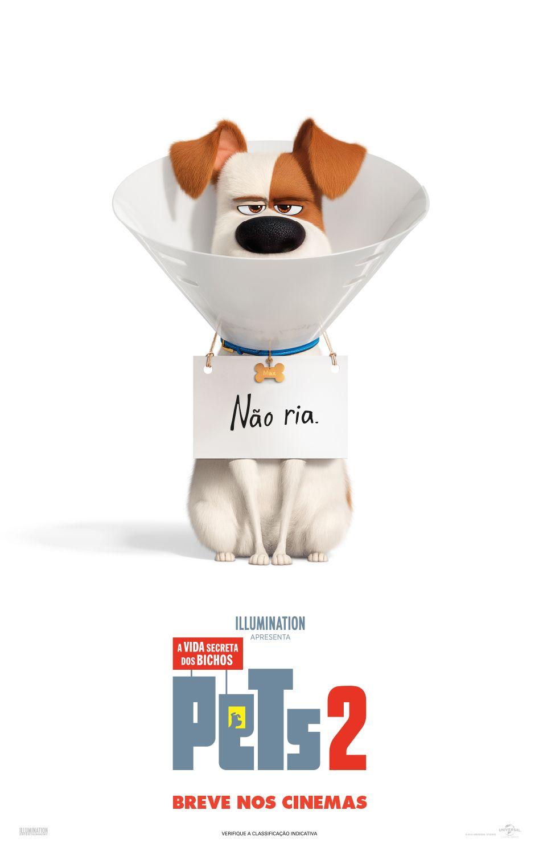 A Vida Secreta Dos Bichos O Filme Completo Dublado confira o cartaz de pets - #avidasecretadosbichos2, que