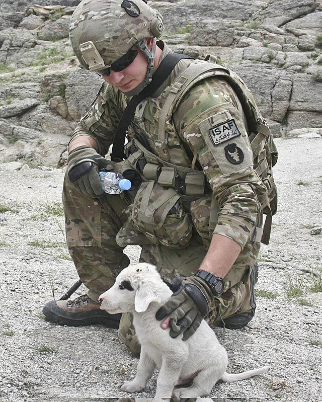 how to become a combat medic uk