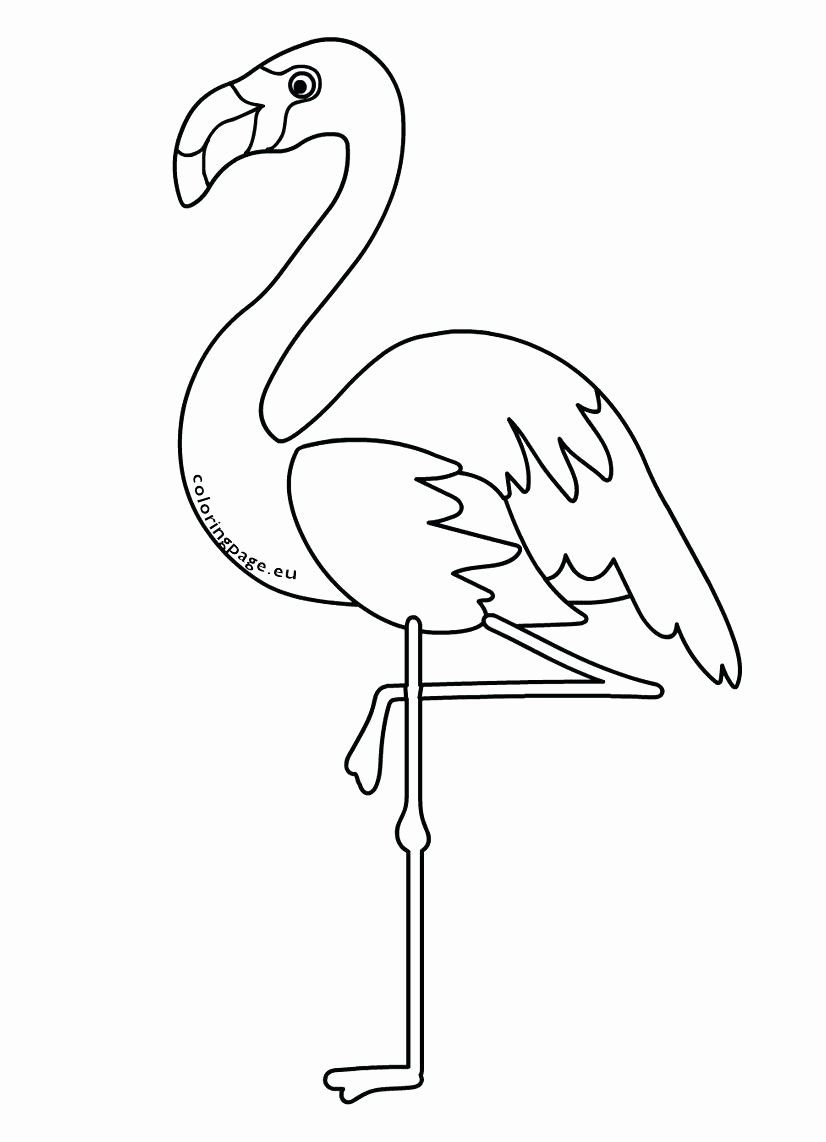 Tribal Animal Coloring Pages Inspirational Flamingo Bird Coloring Pages Tedpaper Animal Coloring Pages Flamingo Coloring Page Coloring Pages