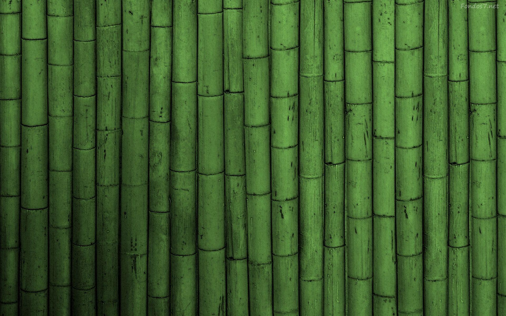 Bambu Verde 4670 Jpg 1920 1200 Texturas Pinterest Textura  ~ Cañas De Bambu Verdes Para Decorar