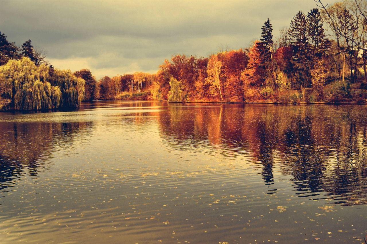 Výsledok vyhľadávania obrázkov pre dopyt autumn tumblr