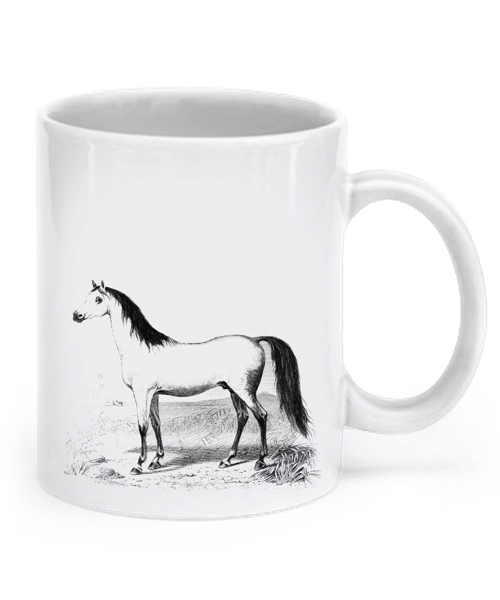 I love my Arabian Horse arabianhorse