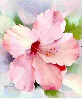 Hibiscus Peinture A L Aquarelle Art Floral Peinture Fleurs