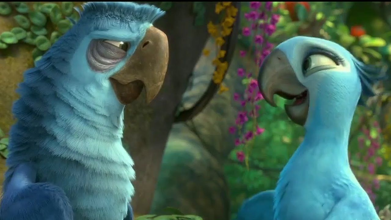 Rio 2 Image 9 Pins By Onlinepaydayloans Pw Con Imagenes Rio