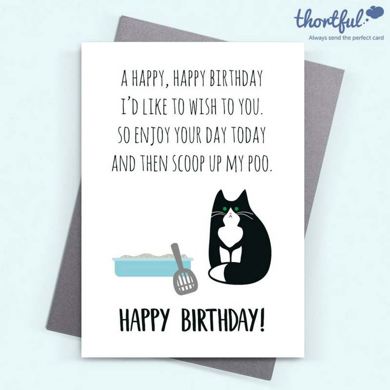 Thortful An Awesome Birthday Card From Miumi Cat Cat Birthday Card Birthday Cards Cards
