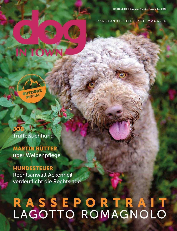 Dog In Town Ausgabe 10 Oktober November 2017 Welpenpflege Hunde