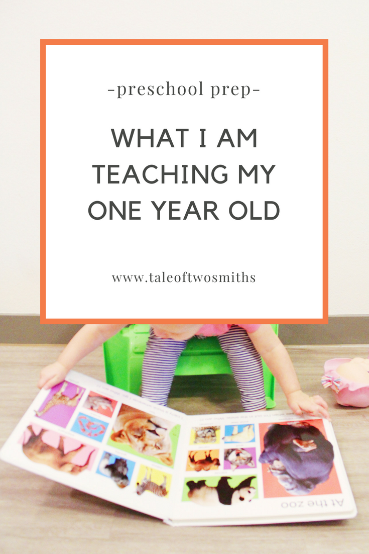 What I Am Teaching My One Year Old | Teaching One year ...