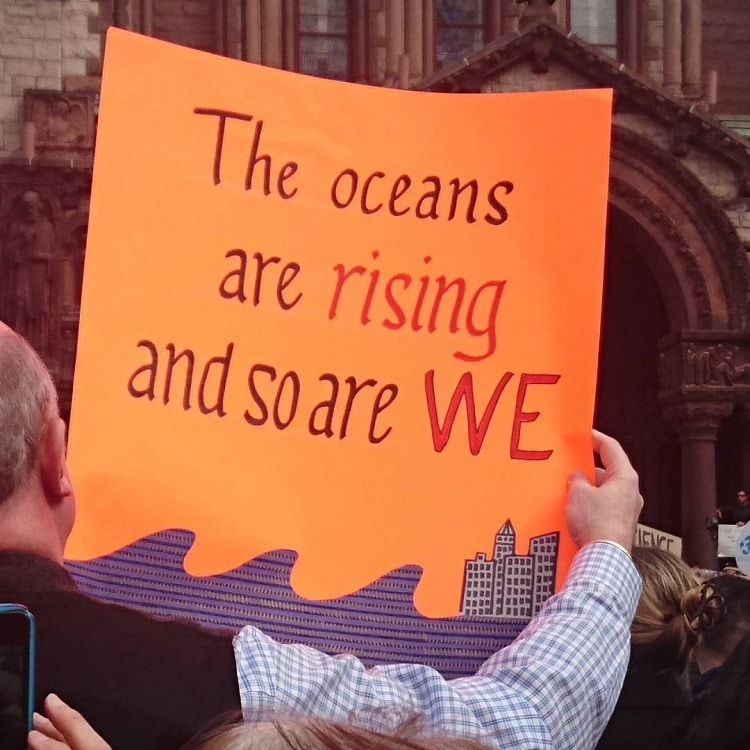 20 Creatively Geeky Signs From The Stand Up For Science Rally Protest Signs Science Protest Climate Change Poster