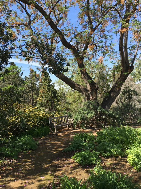 Ucr Botanic Gardens Botanical Gardens Places To Go Riverside