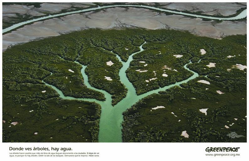 """Título: """"Árbol""""; Medio: Prensa; País: México; Agencia: Nazca Saatchi & Saatchi México; Institución: Greenpeace México. Ganador VII Edición, 2006."""