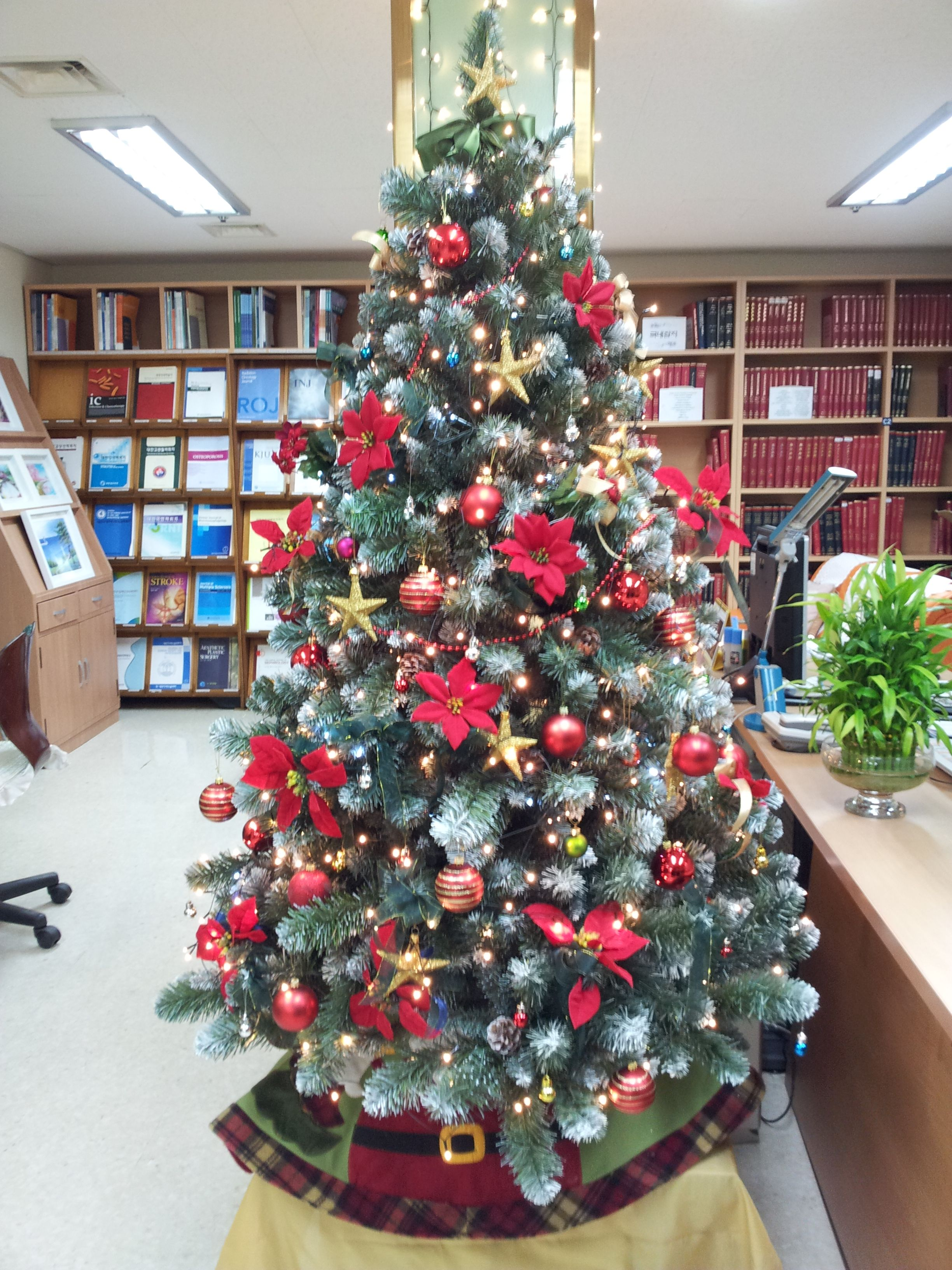 Christmas tree at library of Vincent hospital