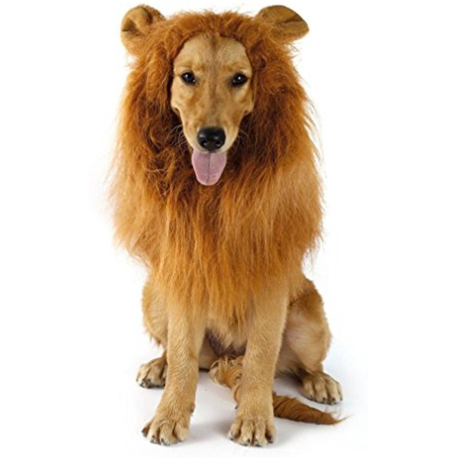 7b8f04d90591f YOFUN Dog Lion Mane with Ear- Adjustable washable lion Mane for Dog - Lion  Mane Wig For Medium to Large Size Dog — Hallowmas Costumes For Dog Come  with ...