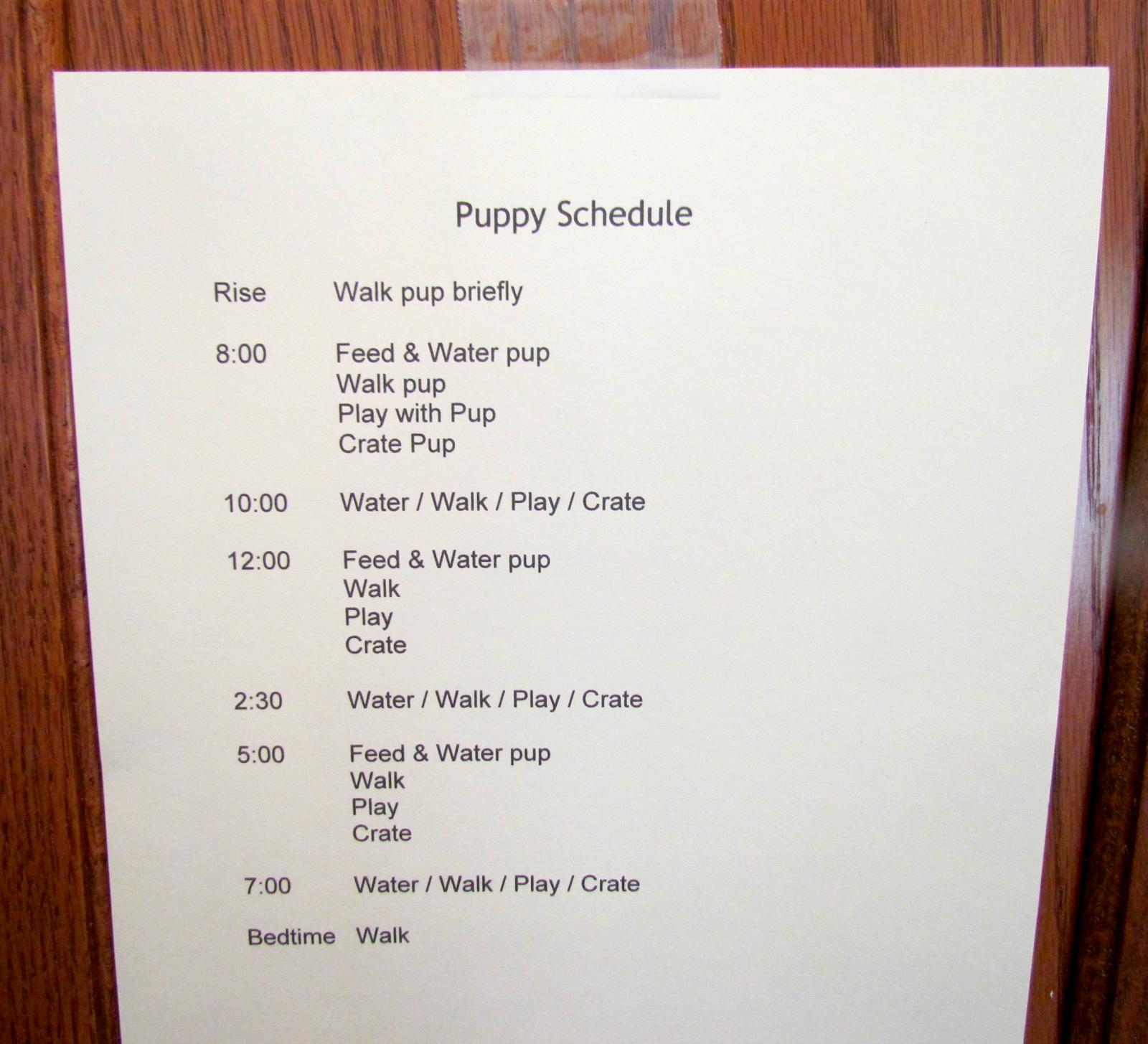Outdoor Potty Schedules 15 Week Puppy Update Crate Training