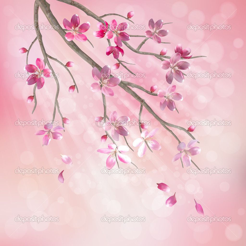 Spring Vector Tree Branch Cherry Blossom Flower Floral Artistic