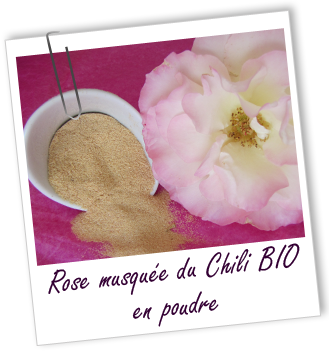 Exfoliant Rose Musquee Bio En Poudre Aroma Zone Pinterest