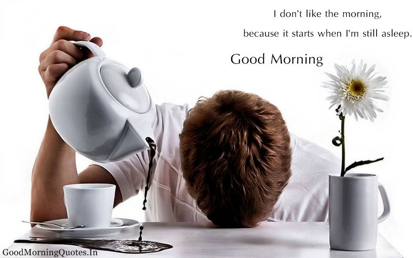 Incroyable Funny Morning