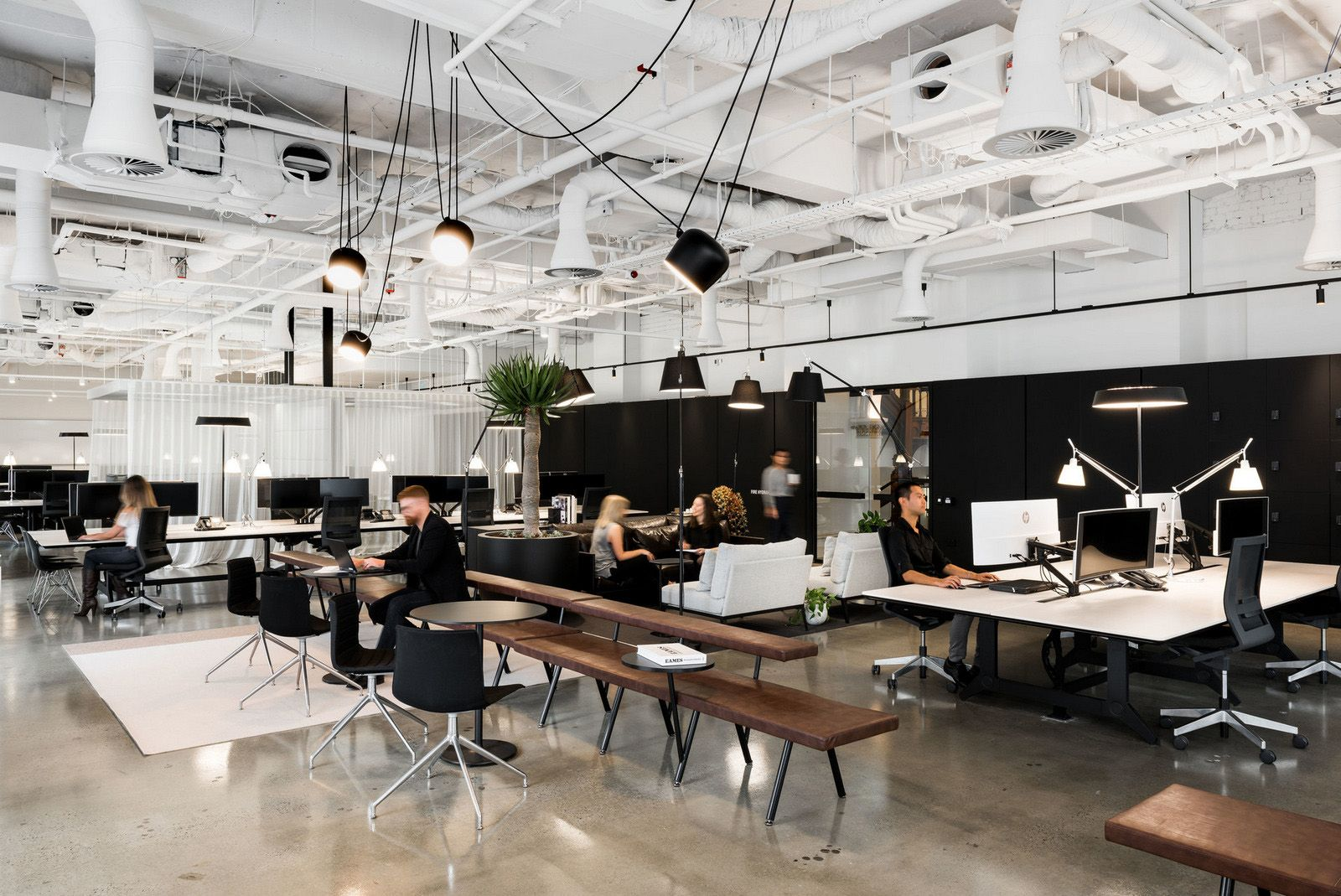 Office tour woods bagot studio offices u perth open plan