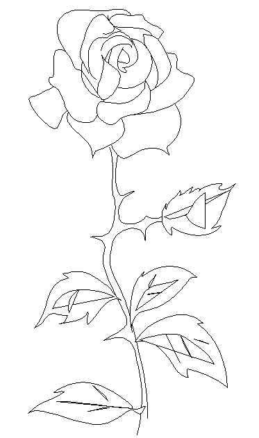 Single Rose Stem Free Printable Coloring And Activity Pages