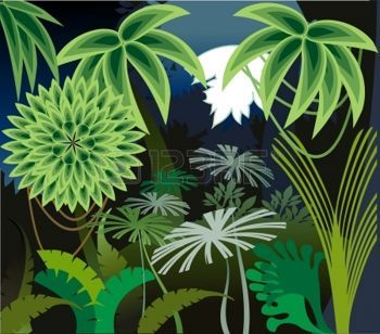 Jungle Illustration Background Google Search Jungle In 2018