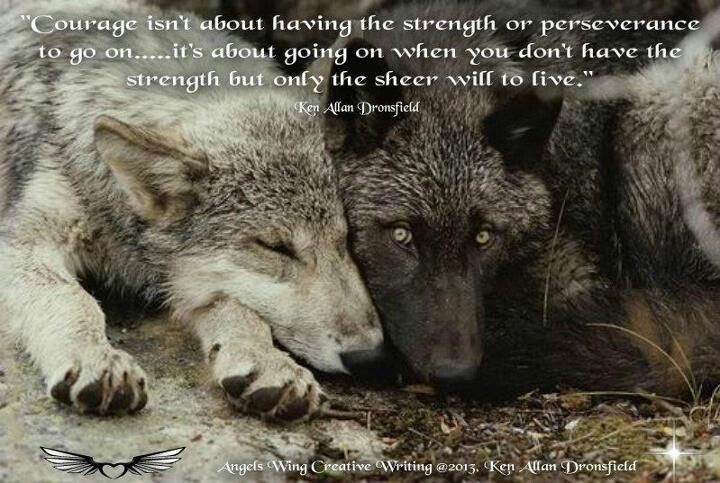 Wolf Quotes About Strength: ~Wolf Quotes~ Courage Isn't About Having The Strength Or