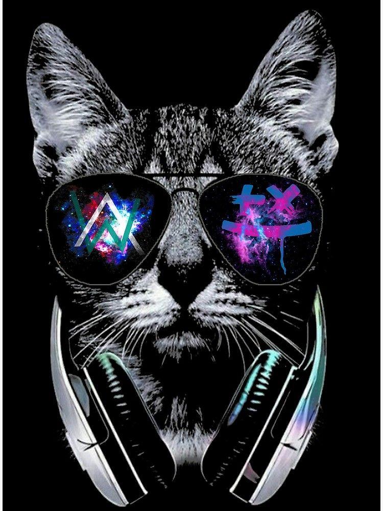 Cool Cat Cat Wallpaper Animal Wallpaper Nature Iphone Wallpaper