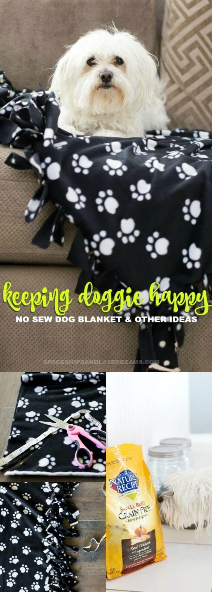 Keeping Doggie Happy: No Sew Blanket + More Ideas via @spaceshipslb