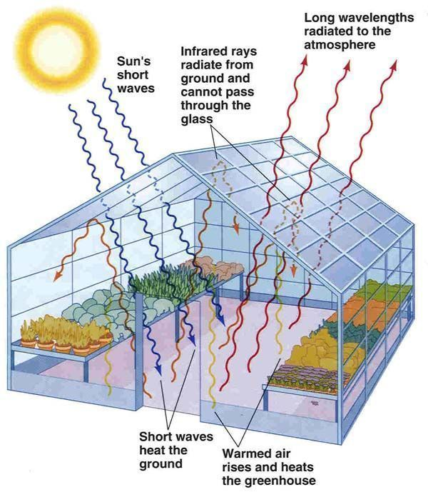 The Greenhouse Effect Conservatorygreenhouse Greenhouseeffect
