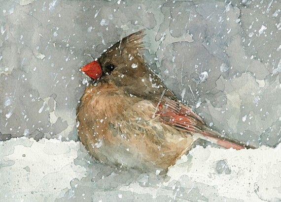Cardinal watercolor art print bird in snow painting - Papier peint pret a coller ...