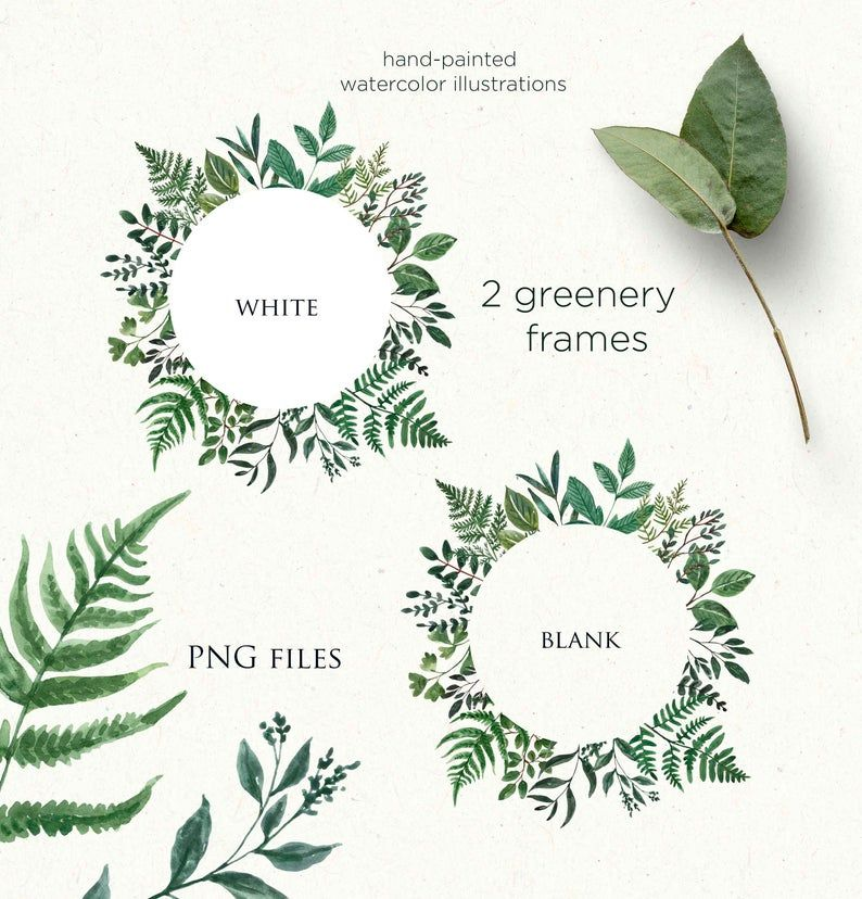 Watercolor Greenery Frame Clipart Frames Borders Png Foliage Etsy Clip Art Frames Borders Frame Clipart Floral Watercolor Paintings