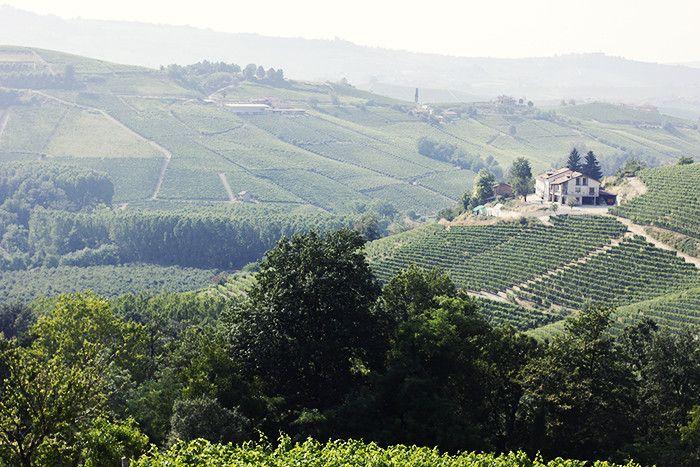 Provence ja Piemonte