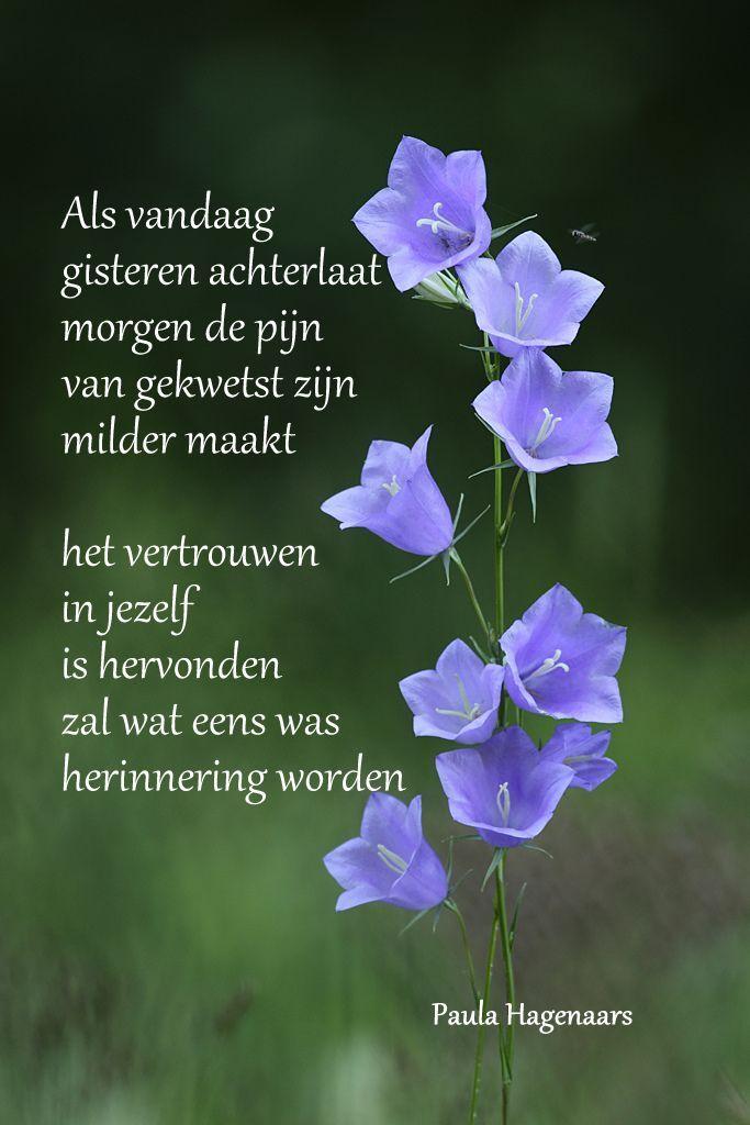 aparte spreuken Gedichten Paula Hagenaars | aparte | Pinterest   Gedichten  aparte spreuken