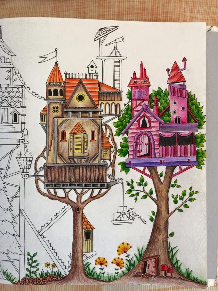 Jardim Secreto E Floresta Encantada Livro De Colorir
